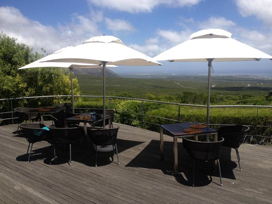 Grootbos Private Nature Reserve : Ausblick