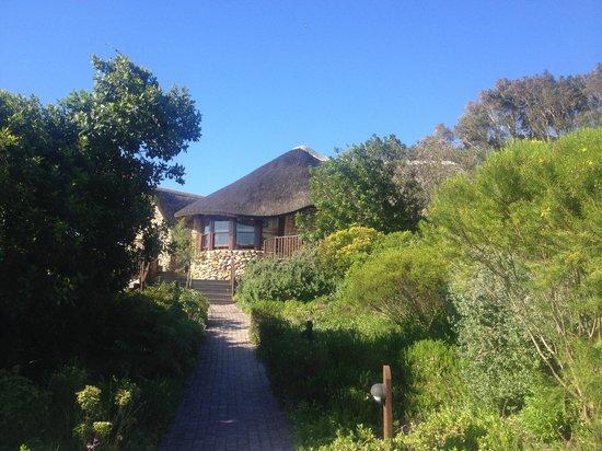 Grootbos Private Nature Reserve : Hotelanlage