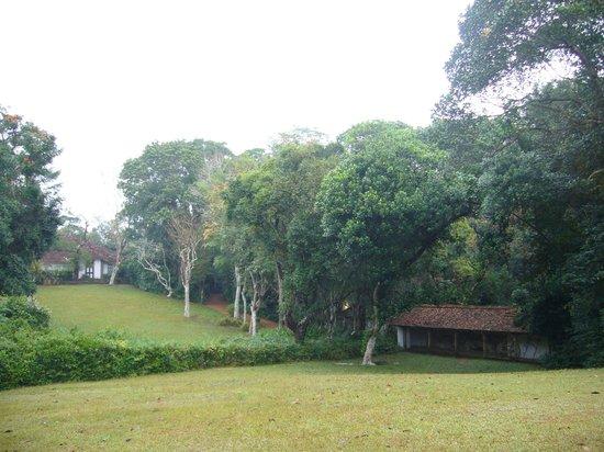 Lunuganga: 広々とした庭園