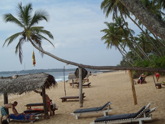 Ganesh Garden Beach Cabanas : Area between Cabana and restaurant