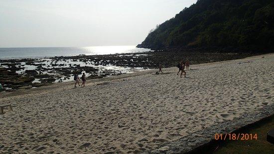 Phuket Marriott Resort & Spa, Merlin Beach: Lavvande !!