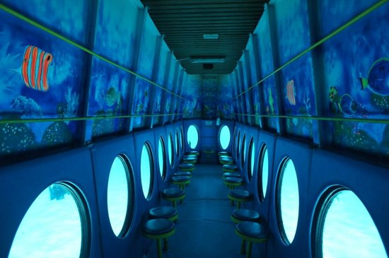 Yellow Submarine Boat Trip: Дно корабля с иллюминаторами