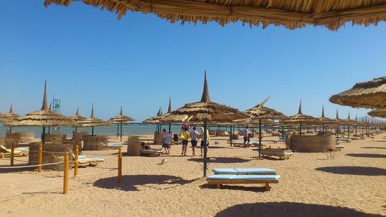 Amwaj Oyoun Hotel & Resort: Beach