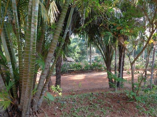 Thuwunna Bumi Mountain View Resort : Gartenblick