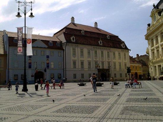 Grand-Place (Piata Mare) : Plaza Grande