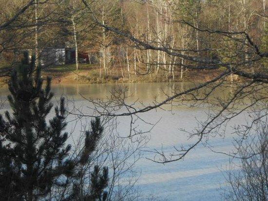 Center Parcs Les Bois-Francs : vue de la chambre