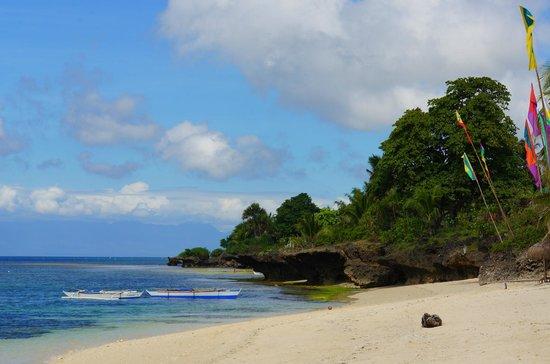Coco Grove Beach Resort : plage