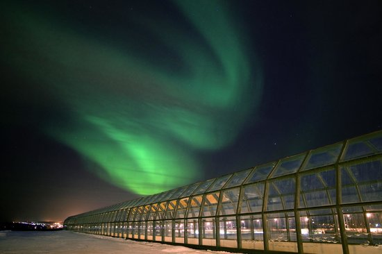 Rovaniemi, Finska: Arktikum and Northern Lights