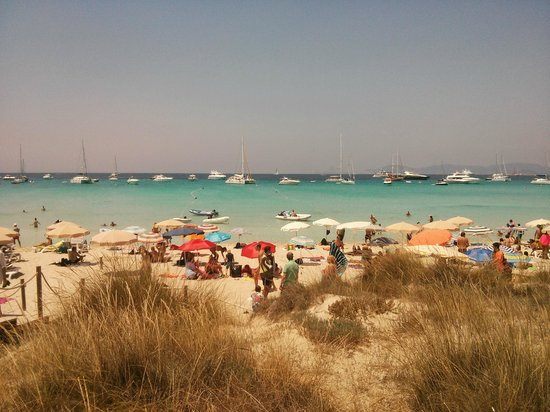 Strand Playa de ses Illetes: Playa de Illetes FORMENTERA