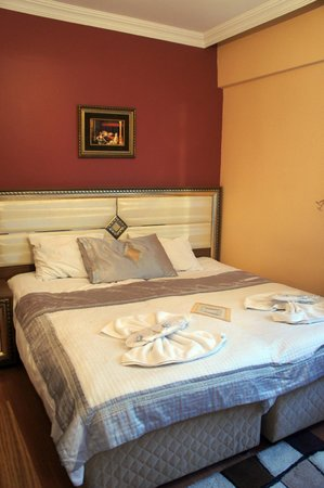 Sirma Sultan Hotel Istanbul: double room