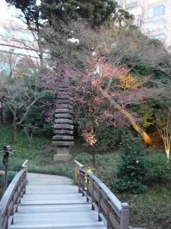 Hotel Chinzanso Tokyo : お庭