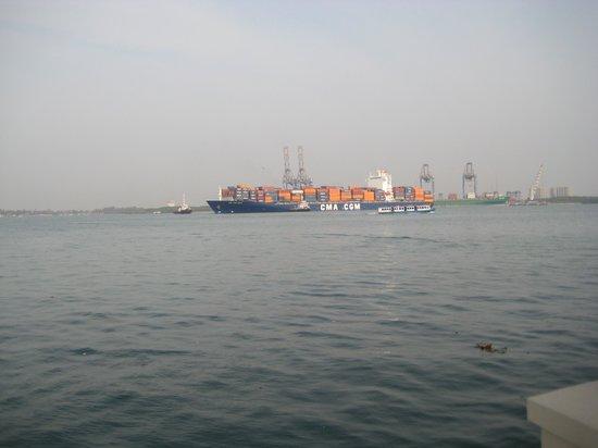 Vivanta by Taj - Malabar: View of the Port