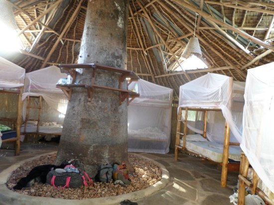Diani Backpackers: one of the dorms
