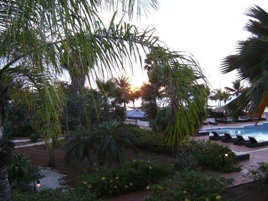 Plaza Resort Bonaire : uitzicht op zwembad en zee