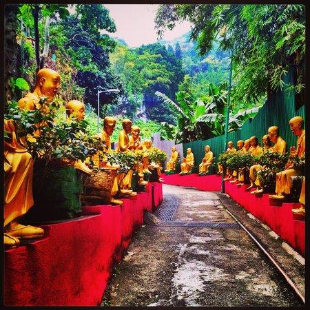 Ten Thousand Buddhas Monastery (Man Fat Sze) : The path to the temple