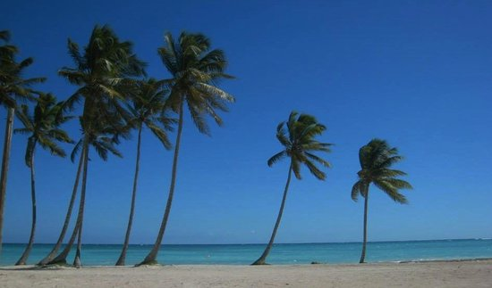 Sanctuary Cap Cana by AlSol: On the beach