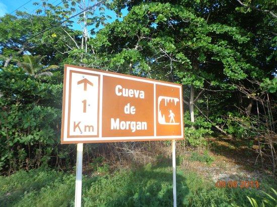 Morgan's Cave : Llegando a la cueva