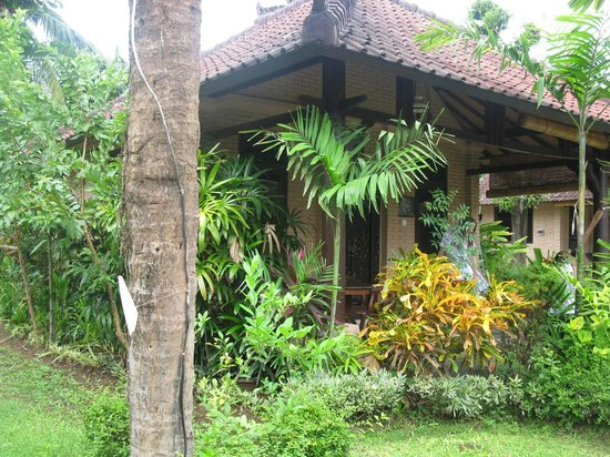 Hidden Paradise Cottages: Room from outside