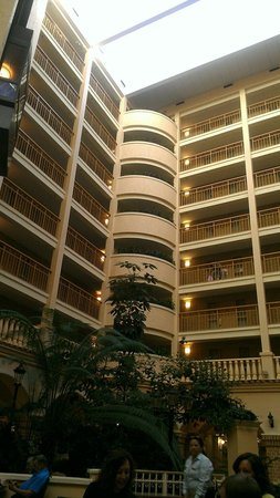 Embassy Suites by Hilton Orlando - International Drive / Convention Center: Picture from the atrium