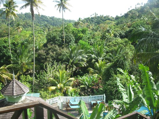 Fond Doux Plantation & Resort : View from Mango