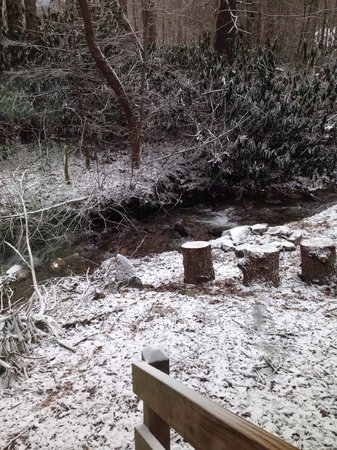 Twinbrook Resort: Snow covered creek behind cabin 3