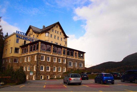 Hotel Waldhaus Am See : 外観