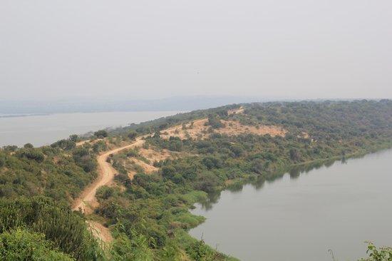 Mweya Safari Lodge: View from restaurant - road leading up to hotel
