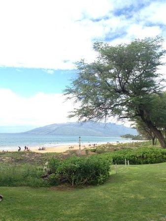 Maui Coast Hotel: great beach