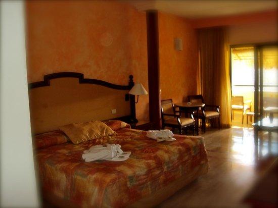 Grand Palladium Vallarta Resort & Spa : Upgraded Room - HUGE