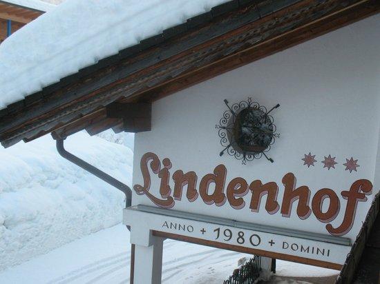 Hotel Lindenhof : L'hotel