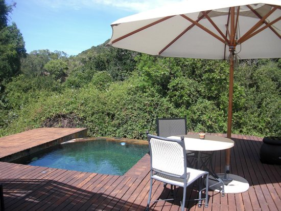 Shamwari Game Reserve Lodges: Pool