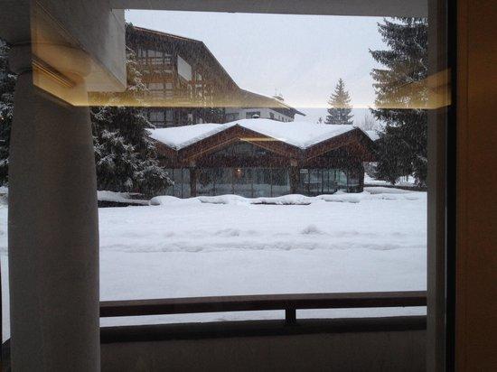 Hotel Trento : Stanza vista giardino, e la vetrata della piscina