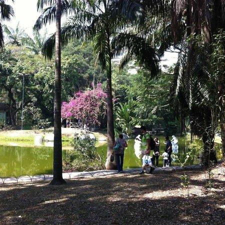 Campo De Sao Bento : Lagos do Campo de São Bento