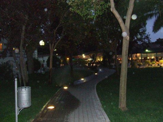 Hotel Osuna: Garden