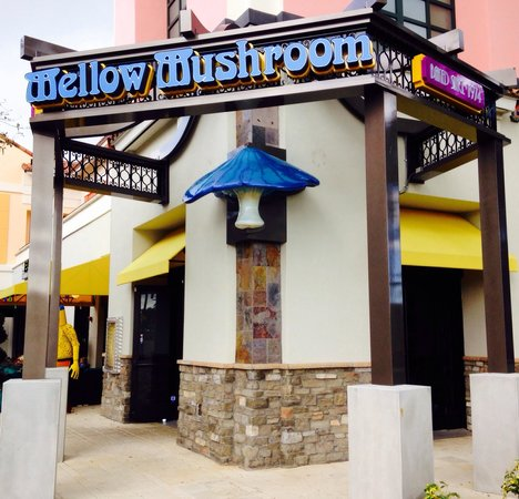 Mellow Mushroom: Great Pizza