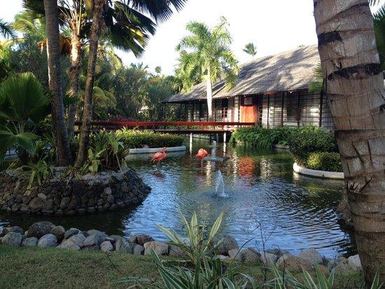 Paradisus Punta Cana: Jardins intérieurs