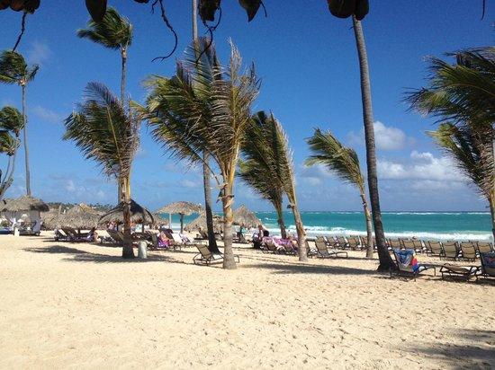 Paradisus Punta Cana: Plage du Paradisus