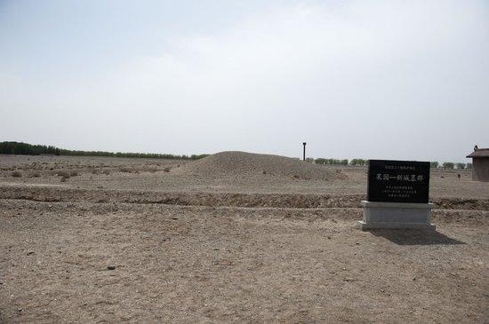 Wei-Jin Tombs : 魏晉墓