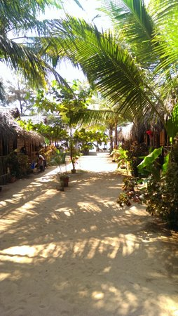 Agonda Cottages: the beach huts surrounded by tropical palms
