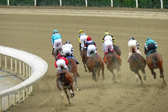 Santa Anita Race Park : At the first turn running in the mud