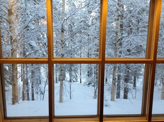 Pyha Log Cabins: View out of 3* cabin window