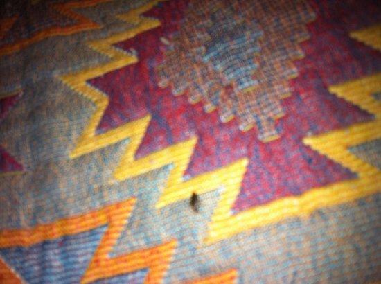 Hotel de Sully: Une des nombreuses punaises de lit !!! DÉGOÛTANT!!!