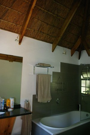 Badger's Lodge: Bathroom