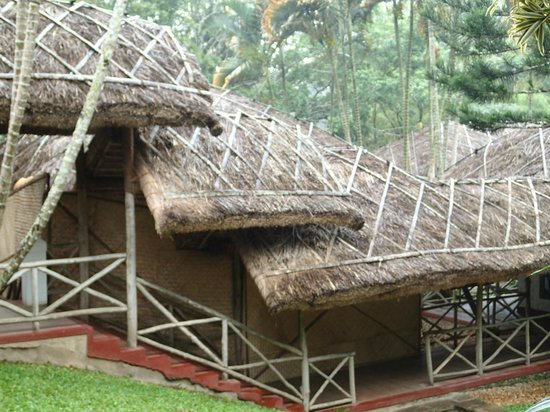 Spice Village: Thatched roofs