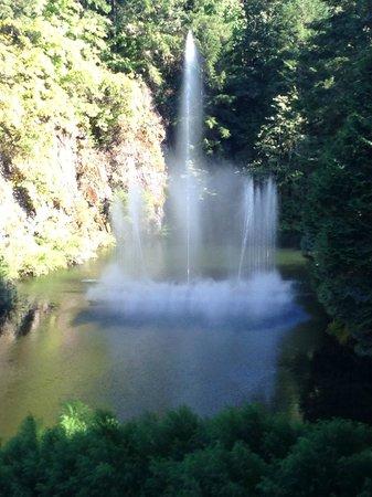 Butchart Gardens: Fountain