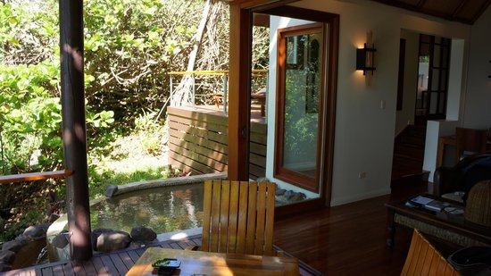 Royal Davui Island Resort : Plunge pool in room