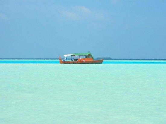 Maldive Due Palme : Doni