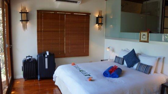 Royal Davui Island Resort : Bedroom