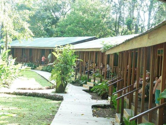Laguna Lodge Tortuguero: chambres