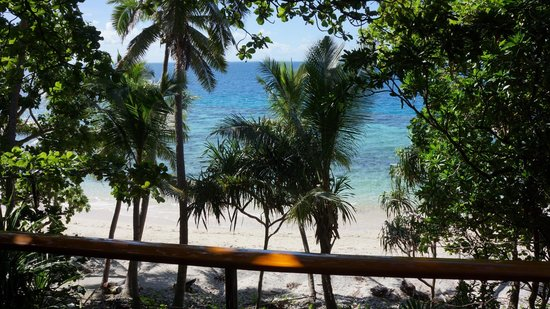 Royal Davui Island Resort: View from room